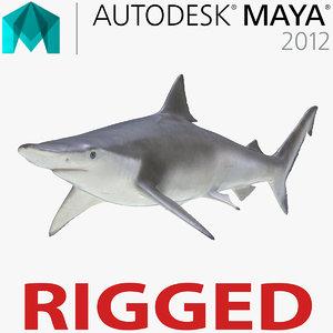 3d spadenose shark rigged model