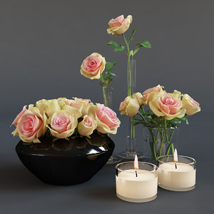 roses candles 3d max