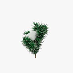 snow fir tree max