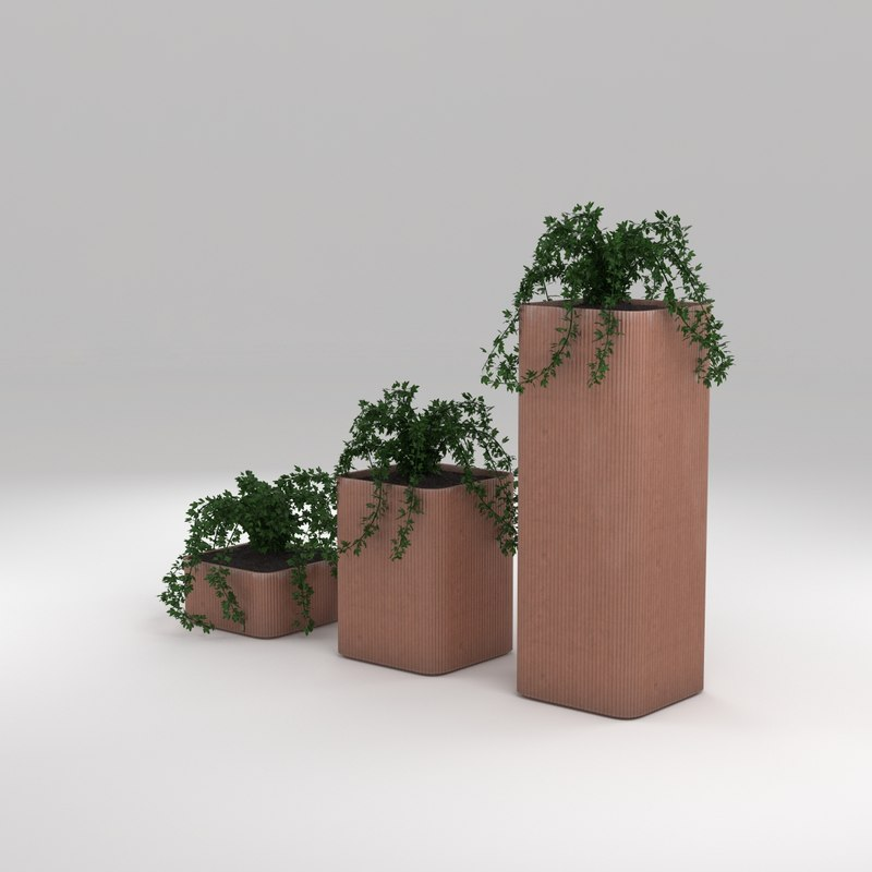 cobe plant terracotta 3d model