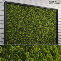 moss wall multiscatter scattering 3d model