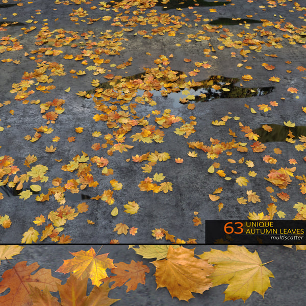 3d realistic fall leaves scattered model