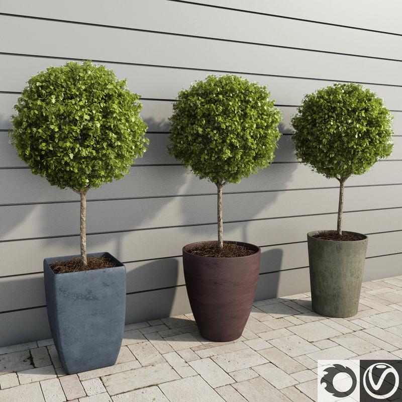 plants hotels restaurants 2 3d model