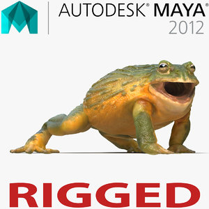 ma african bullfrog rigged