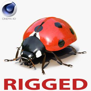 3d ladybug rigged animate model
