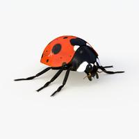 realistic ladybug 3d 3ds
