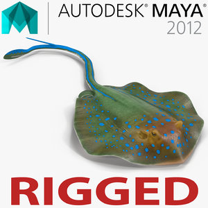3d blue spotted stingray rigged model