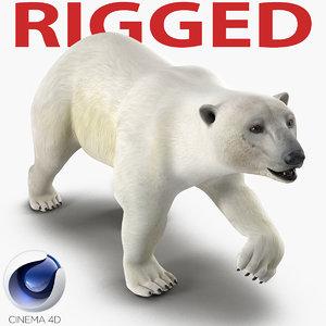 c4d polar bear rigged