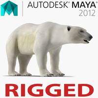 Polar Bear Rigged for Maya