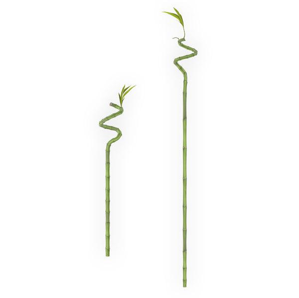 obj lucky bamboo stick