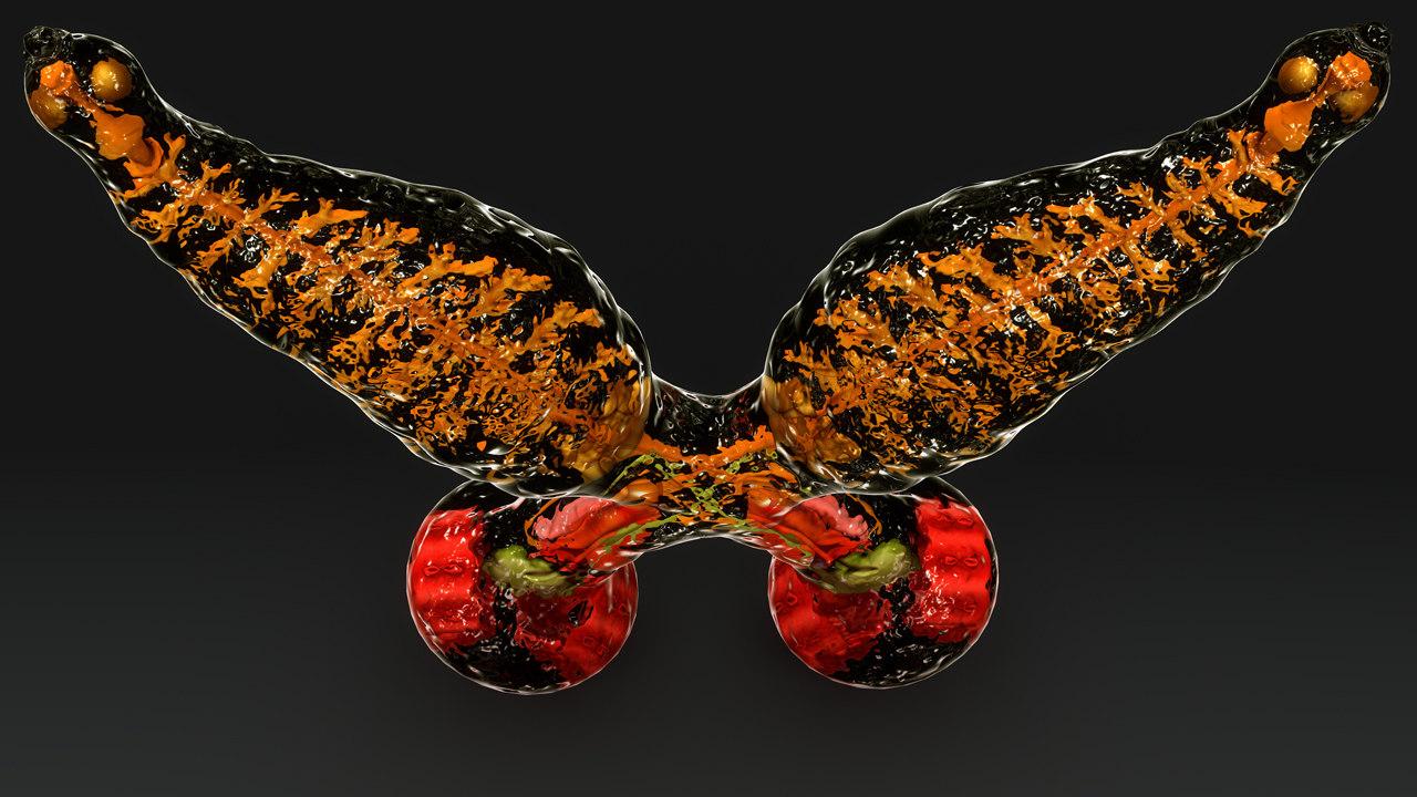 diplozoon paradoxum flatworm 3d model