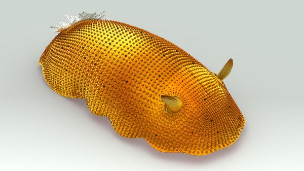 sea lemon 3d model