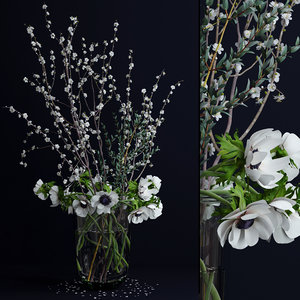 anemones branches flowers plants 3d model