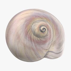 sharkeye moon shell max