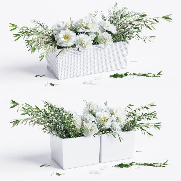 3d arrangements peonies olive model