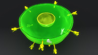 3d model t helper cell anatomy
