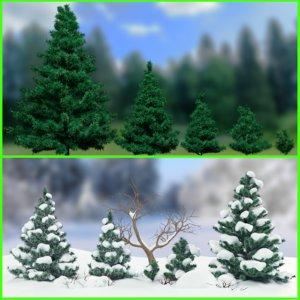 3d winter fir trees bush