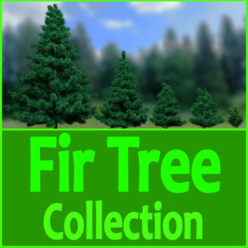 3d model fir trees