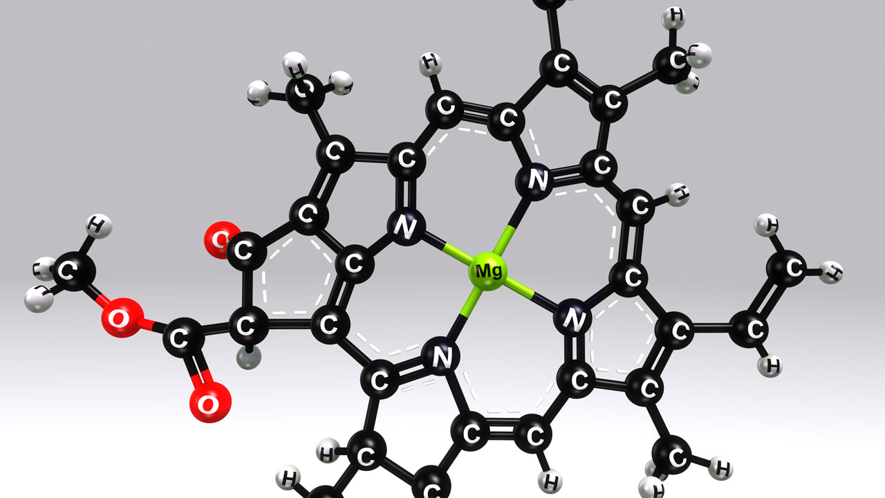 chlorophyll b structure obj