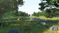 3d ma forest grass