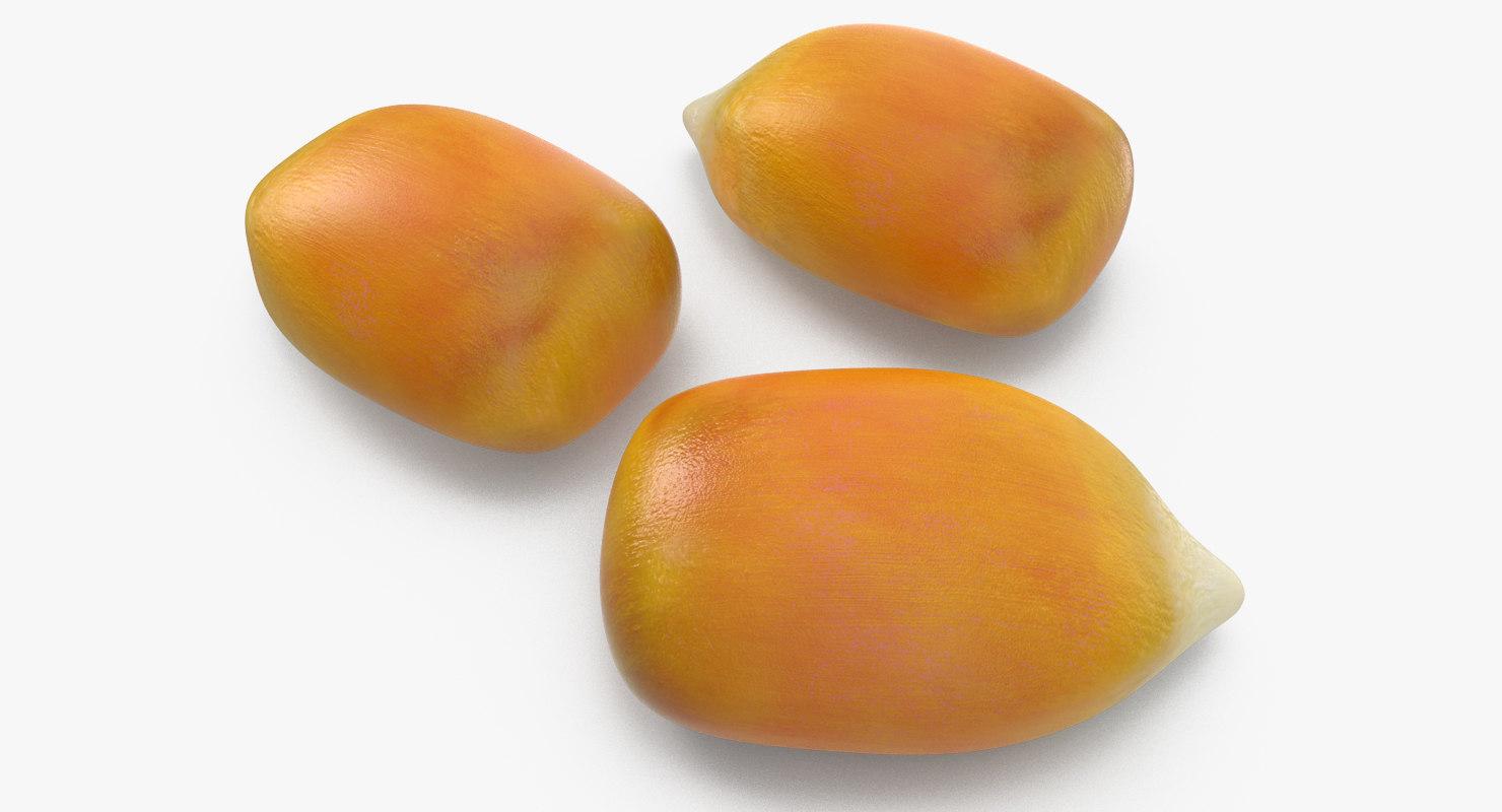 corn seed c4d