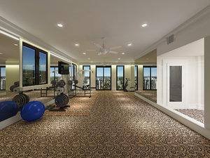 realistic gym private max