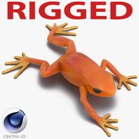 c4d mantella frog rigged