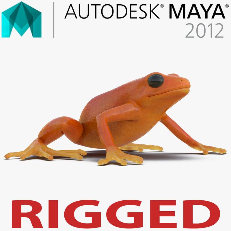 mantella frog rigged 3d model