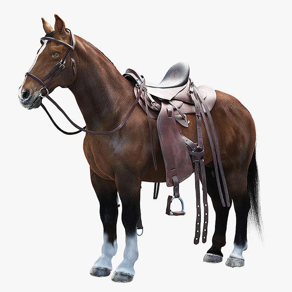 realistic horse max
