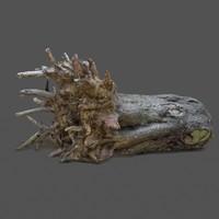 3d model tree 6
