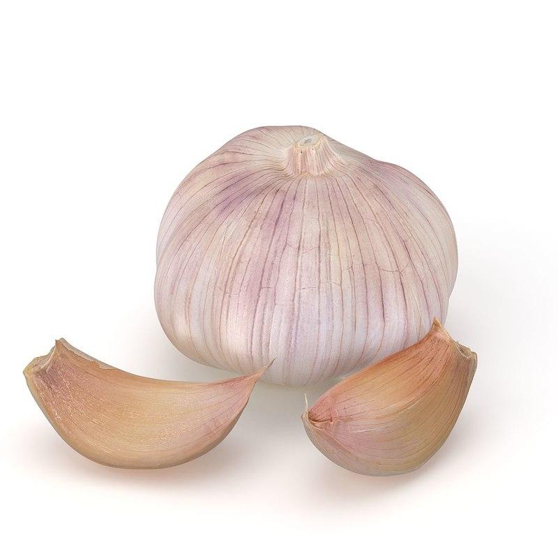 max realistic cloves garlic
