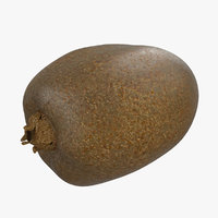 3d kiwifruit modeled