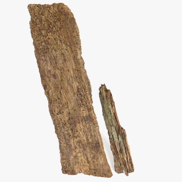 modo rotten plank eaten 3d model