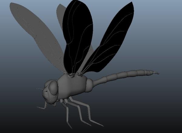 dragonfly rigging ma