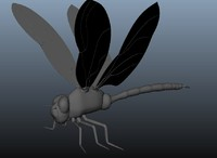 Dragonfly model (no rigging - no texture)