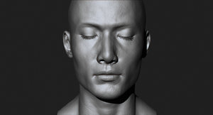3d model asian male head production