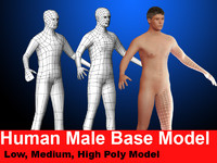 max male base modeled