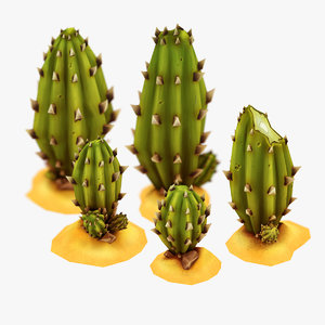 set cactus 3d model