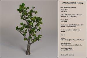 3d fantasy tree 03 model