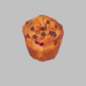 max muffin blueberry berry