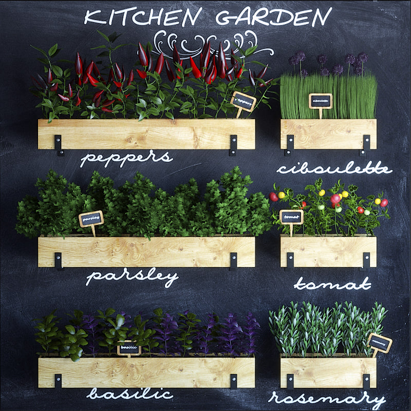 max kitchen garden set