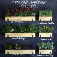 kitchen garden set 3d max