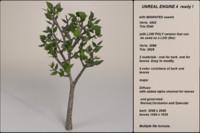 3d fantasy tree 06 model