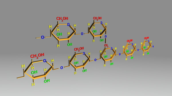obj amylopectin structure