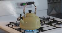 max tea kettle