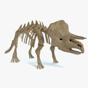 triceratops skeleton 3d 3ds
