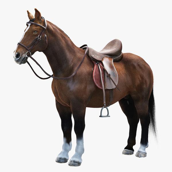 realistic horse saddle 3d max
