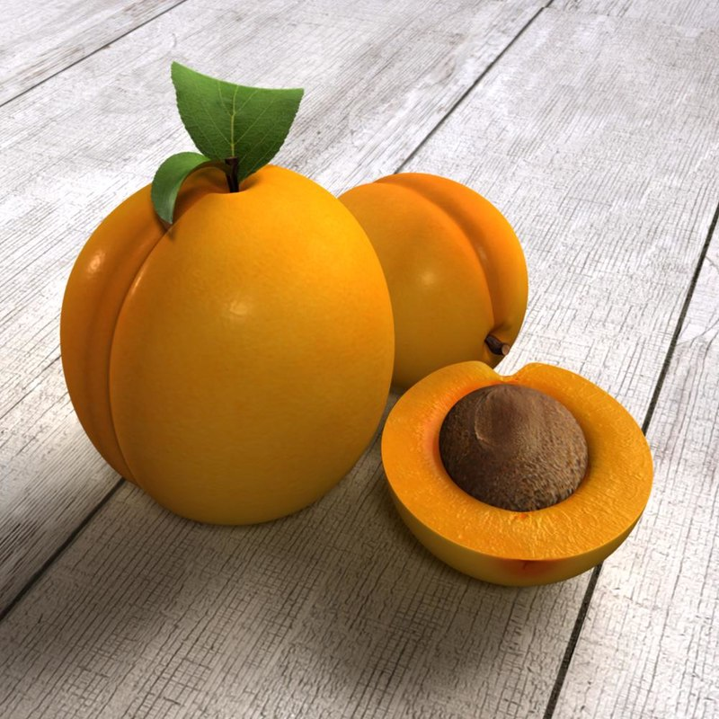 3d model scene apricots
