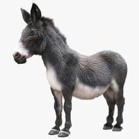 donkey hair 3d max