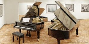 3ds grand piano rig interiors